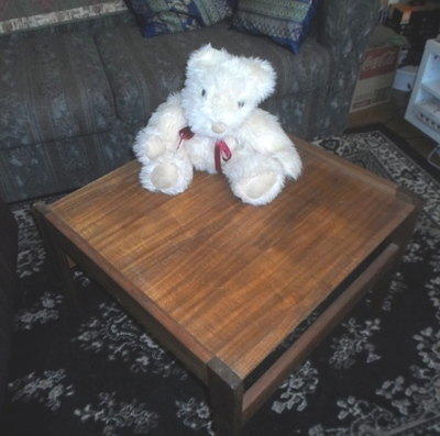 Teddy Bear On Coffee Table
