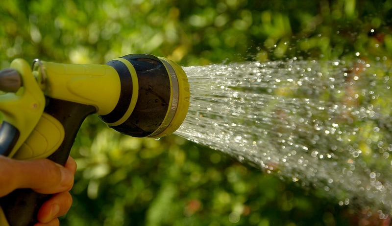 Watering the garden